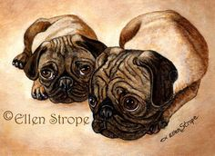 PUGS Notecard Professionally Printed by songmountainfineart