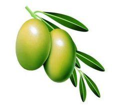 Global Olive Leaf Extract (CAS 32619-42-4) Market 2016 -Frutarom, Nutrafur S.A, Monteloeder, Guilin Layn, Purextract, Naturex, Comvita - https://techannouncer.com/global-olive-leaf-extract-cas-32619-42-4-market-2016-frutarom-nutrafur-s-a-monteloeder-guilin-layn-purextract-naturex-comvita/