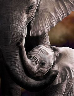 Mother and baby elephant love Mama Elephant, Elephant Love, Baby Elephants, Elephant Art, Mother And Baby Elephant, Funny Elephant, African Elephant, Painted Elephants, Elephant Meaning