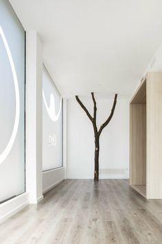 From the roots, Barcellona, 2013 - Susanna Cots Estudi de disseny