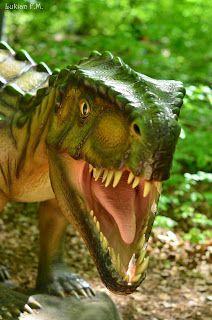 Garden Sculpture, Outdoor Decor, Animals, Park, Animales, Animaux, Animal, Animais