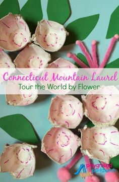 Connecticut Mountain Laurel Flower Craft for Kids... just one of 25+ flower crafts from around the world as part of the Tour the World by Flower Blog Hop