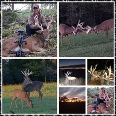 So blessed for the I did with my Dad last week. Great, quality time and brought home lots of Venison, Outdoor Life, Quality Time, My Dad, Hunting, Blessed, Dads, Twitter, Animals
