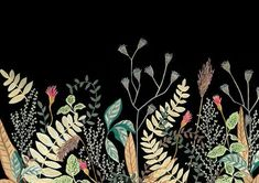 Botanical Illustration, Botanical Prints, Plant Drawing, Macrame Plant Hangers, Flower Prints, Floral Watercolor, Digital Prints, Drawings, Flowers