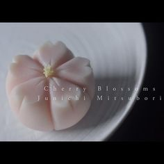 """#一日一菓 「#桜 」 #煉切 製 #Wagashi of the day """"#cherry blossom"""" 本日は「桜」です。 Today is… Japanese Pastries, Japanese Sweets, Japanese Food, Japanese Culture, Japanese Wagashi, Plate Presentation, Food Crafts, Sweet Desserts, Sugar And Spice"""