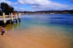 ... merimbula morning shades ... by Scott MacLeod Liddle, via Flickr South Wales, Oysters, Places Ive Been, Beaches, Sydney, Sapphire, Landscapes, Coast, Photos