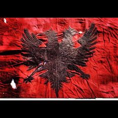 Albania Flag 100 years of State , I am proud to be Albanian