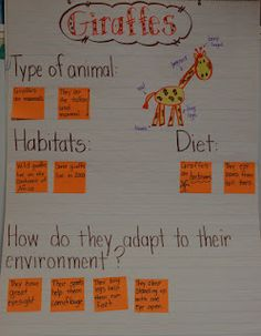 Love this anchor chart from Deanna Jump's blog.   This could be adapted to any animal.  Fantastic!