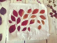 abat-jour avec des feuilles séchées