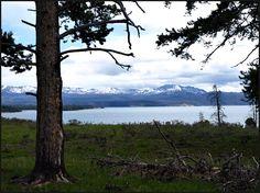 Hiking Lake Yellowstone Trails