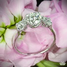 3 Stone Diamond Engagement Ring_$1236_http://www.whiteflash.com/engagement-rings/three-stone/w-prong-3-stone-diamond-engagement-ring-914.htm
