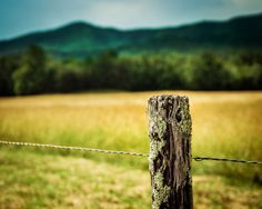 Cades Cove - Everyone loves to spend a beautiful day here!