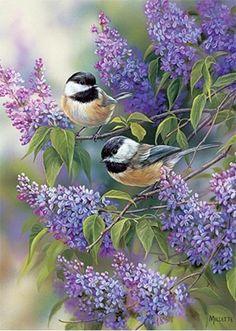Birds with Lilac Flowers Diamond Painting Kit – DazzleCrafter Vogel Gif, Bird Pictures, Quote Pictures, Little Birds, Wildlife Art, Bird Art, Belle Photo, Beautiful Birds, Beautiful Swan