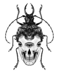 Dan Hillier - Bug Woman. Victorian Collage.