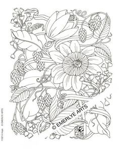 best bird coloring pages flowers and birds coloring books adult coloring pages pinterest more coloring books bird and flowers ideas - Free Printable Coloring Pages Adults Only