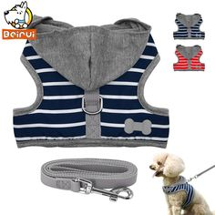 Pet Dogs, Dogs And Puppies, Pets, Milk And Pepper, Puppy Backpack, Yorkshire, Medium Dogs, Dog Harness, Pet Accessories
