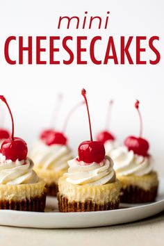 Bake deliciously creamy mini cheesecakes in a muffin pan! This easy recipe yields 9 individual cheesecakes that are perfect for portion control. Mini Cheesecake Recipes, Classic Cheesecake, Cheesecake Jars, Homemade Cheesecake, Individual Cheesecakes, Mini Cheesecakes, Köstliche Desserts, Delicious Desserts, Dessert Recipes