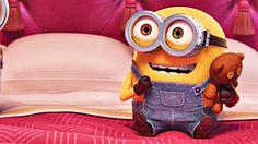 Happy Minions, Minions Bob, Minion Meme, Happy Birthday Minions, Cute Minions, Minions Funny Images, Emoji Images, Minions Despicable Me, Minions Quotes