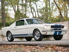 1965 gt350 The day I buy a 1960's Mustang Shelby GT350 will officially be the best day of my life.