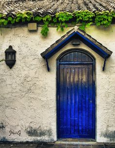 cobalt cottage door