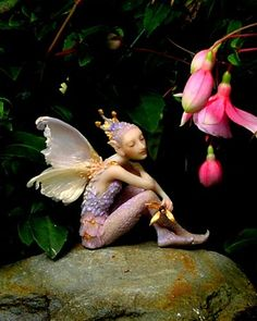 Twilight Fairy. Forest Rogers