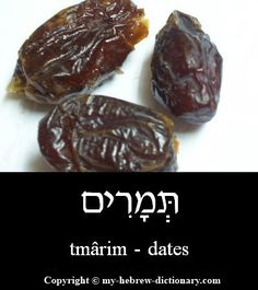How to say Dates in Hebrew. Includes Hebrew vowels, transliteration (written with English letters) and audio pronunciation by an Israeli. Biblical Hebrew, Hebrew Words, Hebrew Writing, Hebrew Names, Hebrew Vowels, Learn Hebrew Online, English To Hebrew, Learning A Second Language, Hebrew School