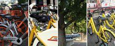 il popolo del blog,notizie,attualità,opinioni : una bici appesa ad un albero, a Milano si può, la ...
