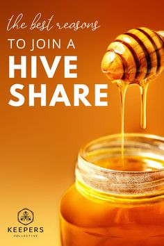 Have you ever wanted to raise honey bees but just don't have the time or resources? Joining a hive share with local beekeepers may be the answer! Read on for 6 reasons why joining your local bee community is so great for helping bee populations grow, raising honey sustainably, and reaping the health benefits of raw honey! #honeybees #localhoney #honeybeefacts #raisingbees