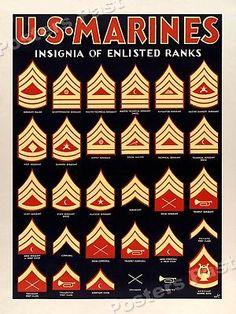 US Marines Insignia Illustrated Vintage Style Poster - Army Ranks, Military Ranks, Military Insignia, Military History, Navy Military, Marine Corps Quotes, Marine Corps Humor, Usmc Quotes, Military Quotes