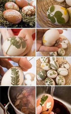 How to decorate eggs for Easter | Diy Land