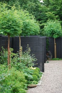 Thrilling Wooden Garden Fencing Ideas 5 Simple and Crazy Tricks Can Change Your Life: Front Yard Garden Fencing, Backyard Fences, Garden Landscaping, Landscaping Ideas, Small Gardens, Outdoor Gardens, Garden Screening, Modern Fence, Wooden Garden