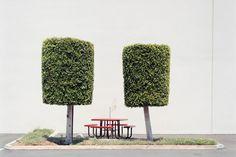 J BENNETT FITTS industrial landscap