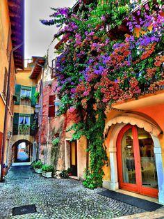 A trip - Lago di Garda