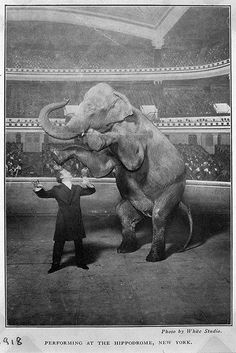 Harry Houdini and Jennie the elephant performing at the Hippodrome