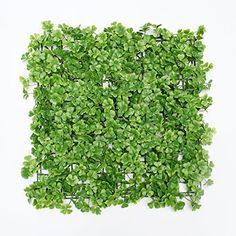 SUNWING 33 Sqft Artificial Boxwood Foliage 3leaf Greenery Panel For Plastic Garden Hedges Home Wedding Decor 20x20pcs Pack of 12pcs >>> Want to know more, click on the image.