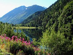 maine scenic byways - Google Search