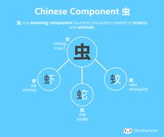 Everything you need to know about the Chinese character component 虫 insect in an easily downloadable and sharable image