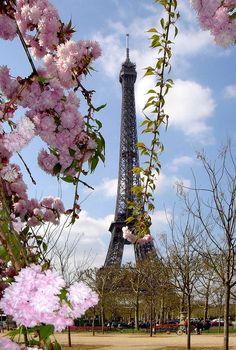 Paris, France - Best Places to See Cherry Blossoms in the World - See them at Petit Palais, south facade of the Notre Dame, the Square Gabriel Pierné, Jardin des Plantes // localadventurer.com
