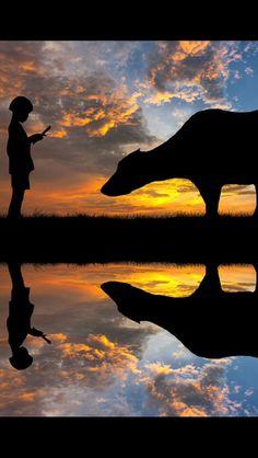 O milagre da Vida acontece, quando você acorda e pode ver novamente o brilho do sol anunciando um novo Dia... Renove sua vontade de amar, de viver e deixe seu coração pulsar com alegria... O segredo para viver bem é ter esperança sempre, por isso, abrace a vida, abrace seus objetivos com vontade e determinação e deixe o dia florir, com Paz e Gratidão!...