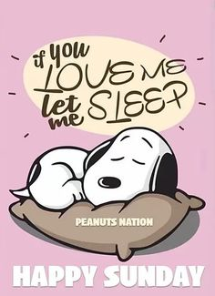 Snoopy Love, Charlie Brown And Snoopy, Snoopy And Woodstock, Peanuts Cartoon, Peanuts Snoopy, Peanuts Comics, Snoopy Quotes, Me Quotes, Snoopy Pictures