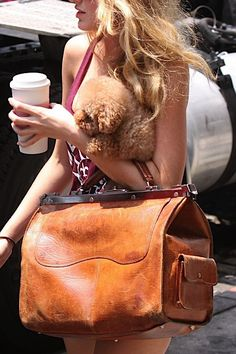 Beautiful vintage doctor's bag owned by Blake Lively.