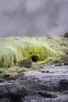 MOST OTHERWORLDLY LANDSCAPE  Te Puia Geothermal Park, New Zealand