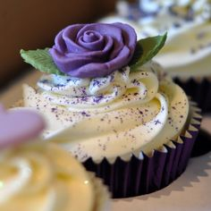Purple Rose Cupcakes | Purple Wedding Cupcake Tower at Brampton Golf Club | from the sweet ...