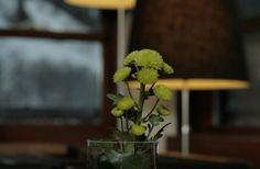 kaminzimmer - essen & genuss - Designehotel Hotel Walliserhof - brand - vorarlberg Design Hotel, Plants, Essen, Plant, Planets