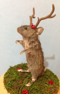 Molly the Mouseolope Rogue Taxidermy Piece by MorbidCurioTaxidermy, so weird and wonderful