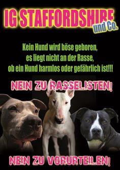 IG_Staff_Poster__A1(1)klein1