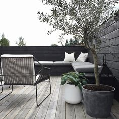 "3,608 Likes, 65 Comments - Nina Holst (@stylizimoblog) on Instagram: ""It's so nice to finally use our #terrace again! #stylizimohouseoutdoors #uterom #oliventre #hosta…"""