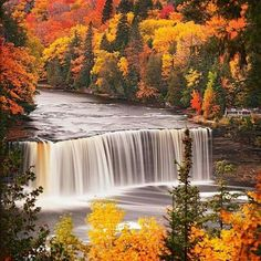Tahquamenon Falls in Fall. Michigan's Upper Peninsula. Been twice, but never in Autumn.