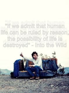 Into the wild - quote / words Feel, only your heart will guide you.