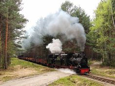 For #steamysunday ...just found out about this narrow gauge line (600mm / 1.97ft) the Waldeisenbahn Muskau in Weisswasser (Germany, on the border with Poland).  Somehow small steamer have more charm than a BigBoy and heck at least they still run and not collect rust :)  If any members have been there, would like more informations..(beside their website and wiki)..thanks in advance.  Picture courtesy of the Waldeisenbahn Muskau